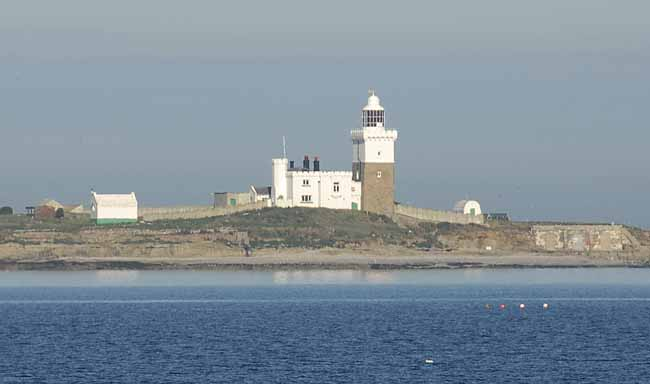 Coquet Island - Copyright 2009 D.Brotherston