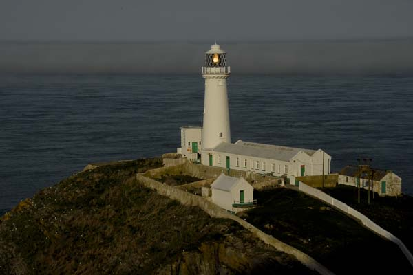 South Stack - Copyright 2011 D.Brotherston